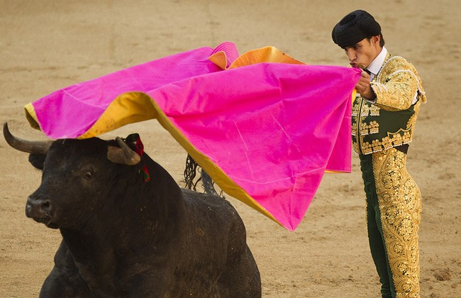 Matador in Spain gored to death by a bull