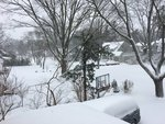 Winter Storm Niko - Snapshots from Around the Island