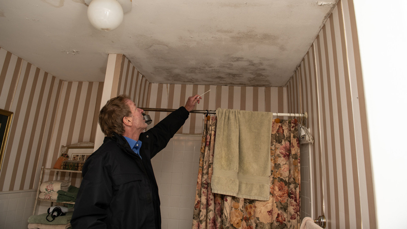 A man examining mold damage on a bathroom ceiling