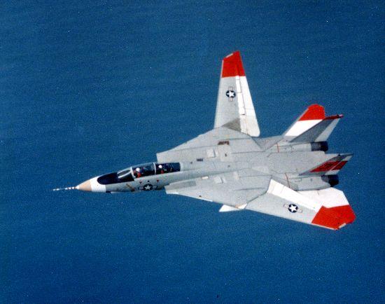 Grumman_F-14_Tomcat_SDASM.jpg