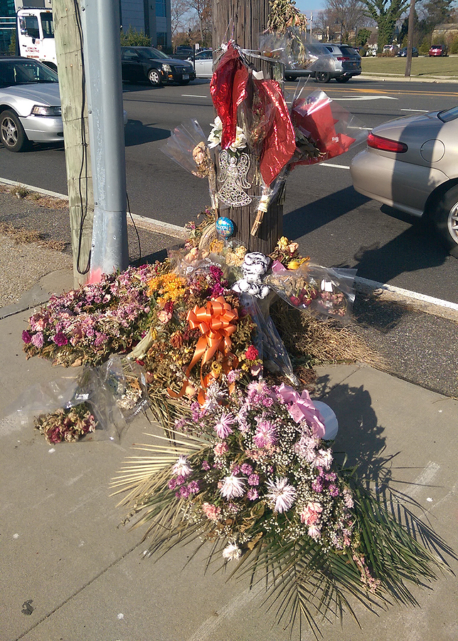 Nearly a Month After Fatal Levittown Hit-and-Run Death of