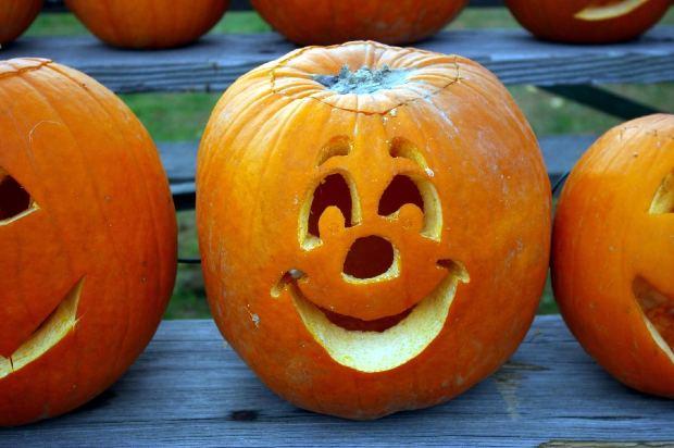 Aninimal Book: Jack-o-Lantern Carving Made Easy - Perfecting You Pumpkin ...