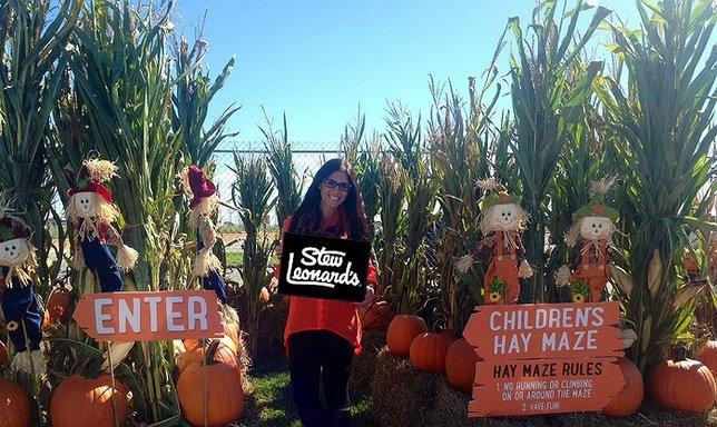 Halloween 2020 Long Island Stew Leonards 2016 Halloween Happenings at Stew Leonard's Farmingdale Store