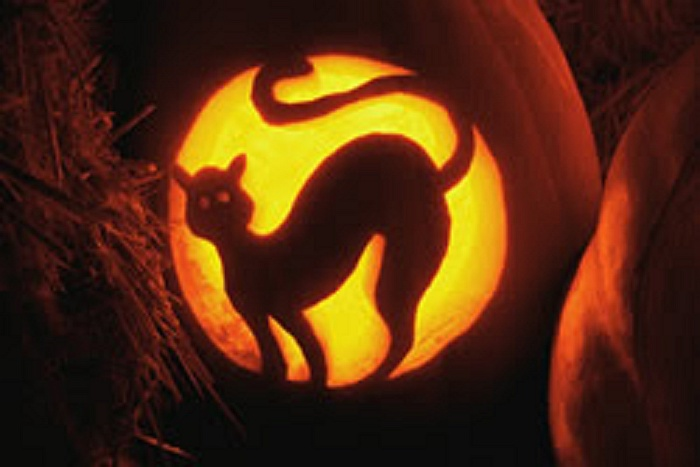 ncspca halloween tips for you and your pets. Black Bedroom Furniture Sets. Home Design Ideas
