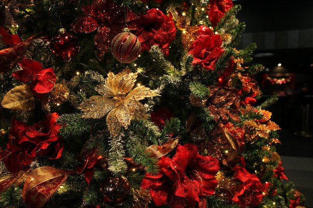 Celebrate the 2016 Holiday Season with a Tree Lighting Ceremony on Long  Island