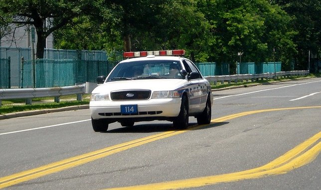 Scpd pedestrian killed while walking her dog in east for Motor vehicle long island