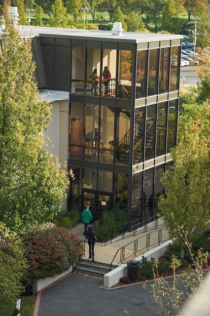 Adelphi University S Business School Interns Make The Best Impression