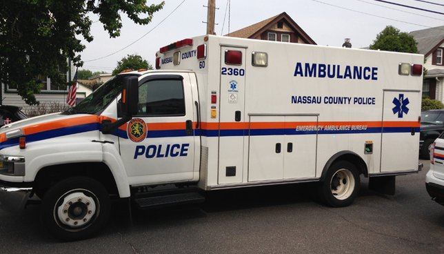 Infant, mom attacked by pit bull in Elmont, Nassau police say