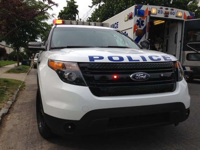 Human remains found during search of woods