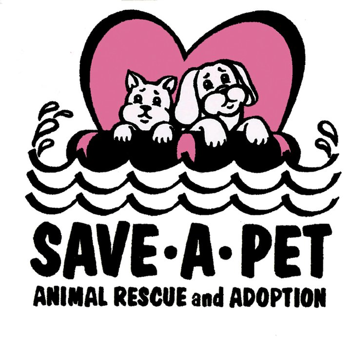 Pets For Adoption On Long Island