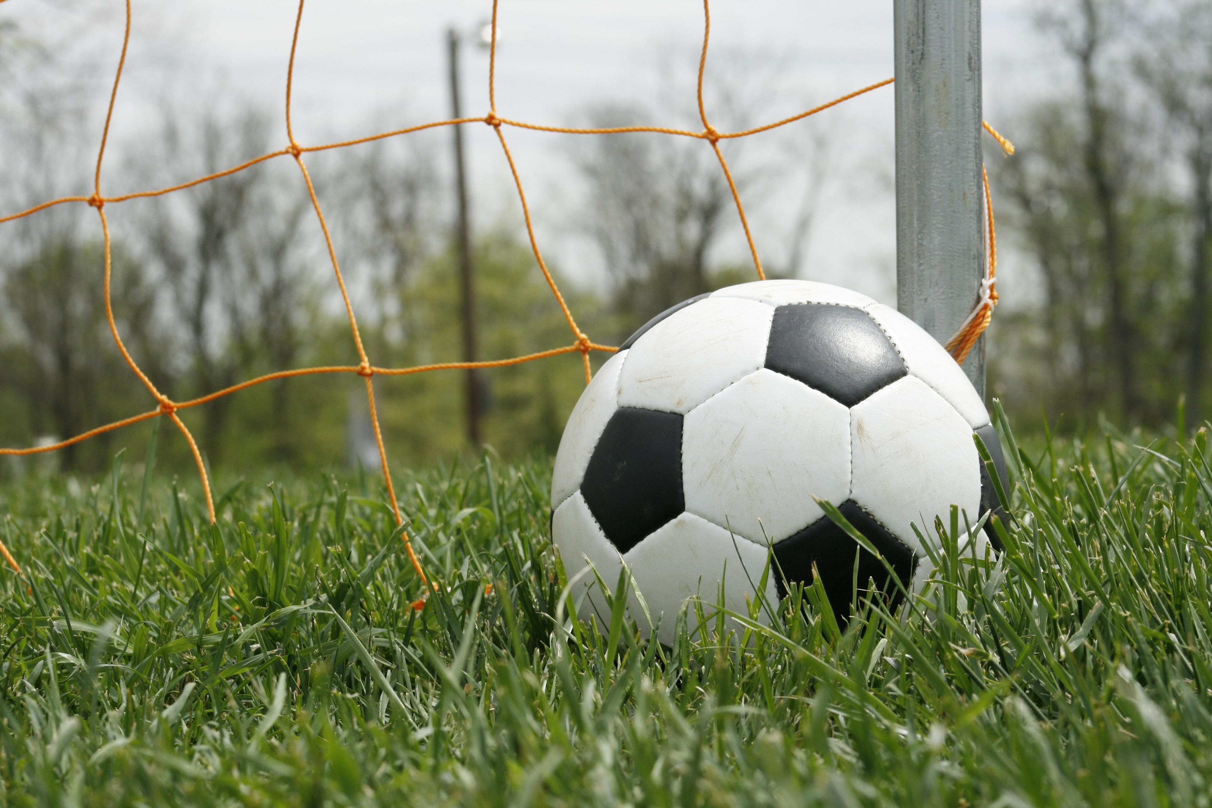 Мяч в сетке  № 1365517 без смс