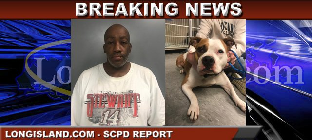 SPCA: Bay Shore Man Charged with Choking, Throwing Dog to
