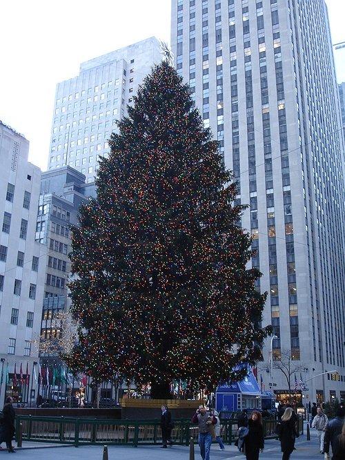 The 2014 rockefeller christmas tree lighting brightening for Christmas day in new york