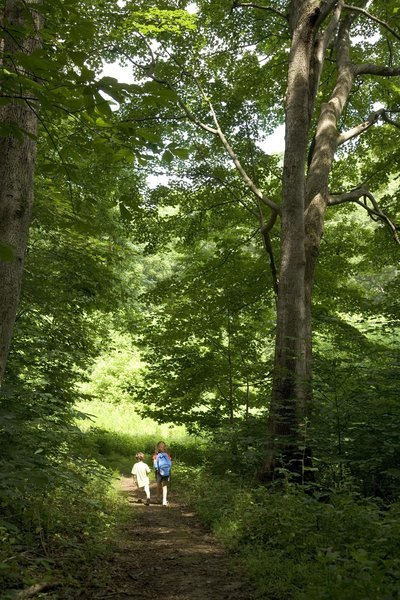 Guided Hikes On Long Island
