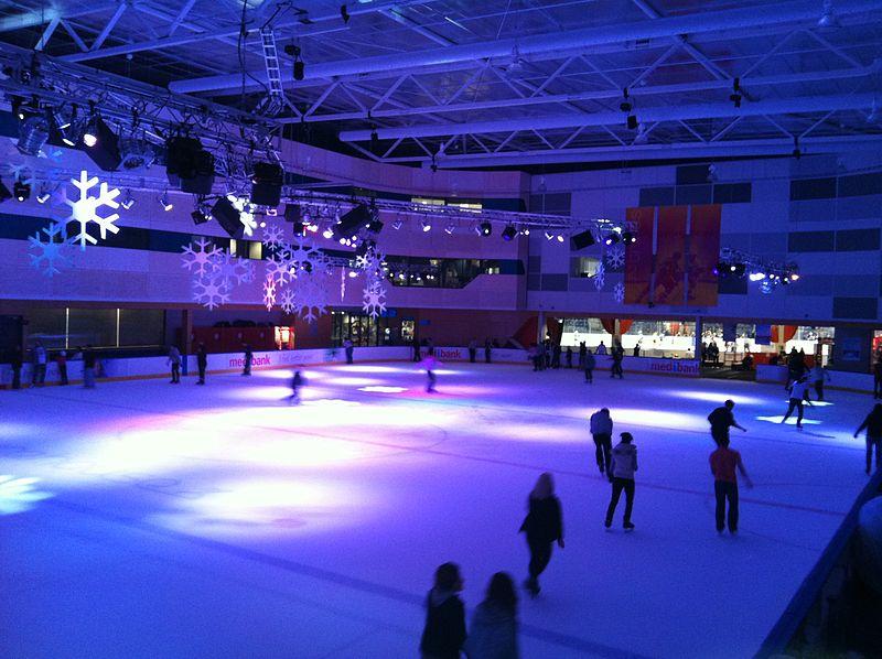 roller skating essay