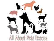 All About Pet Rescue