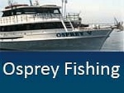 Port jefferson a visitor 39 s guide planning a day trip to for Celtic quest fishing port jefferson ny