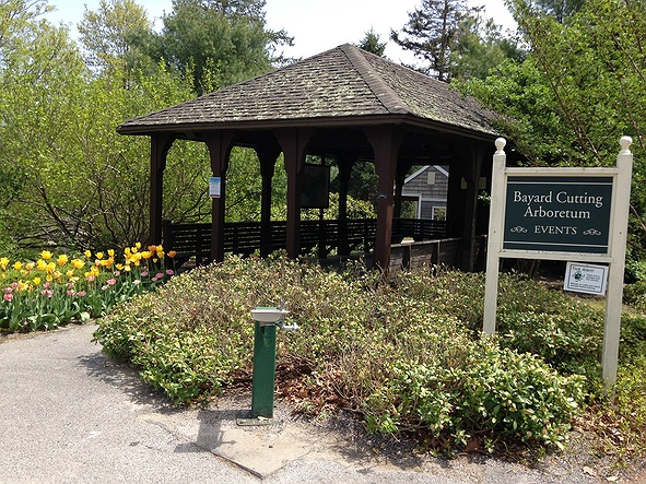 Used Cars Long Island >> Bayard Cutting Arboretum State Park in Long Island, Great ...