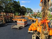 Stay Close To Home And Visit The Dees Fall Festival Every Saay Sunday In October Columbus Day 11am Till 5pm