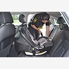 Free Child Safety Seat Ch