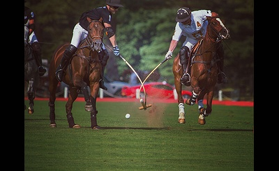 7-in-Heaven Polo at the Park - All Ages
