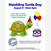 Hatchling Turtle Day
