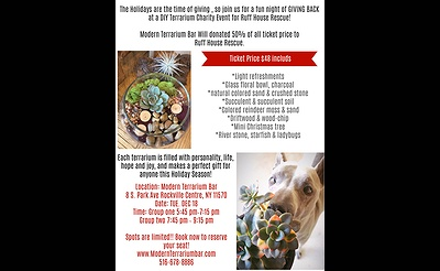 DIY Terrarium Charity Event for Ruff House Rescue