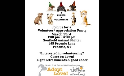 Volunteer Appreciation Party (Open to Everyone)