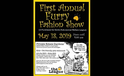 First Annual Furry Fashion Show