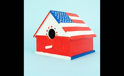 MAKE break Patriotic Birdhouse