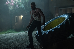 Untitled Wolverine