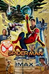 Spider-Man: Homecoming An IMAX 3D Experience