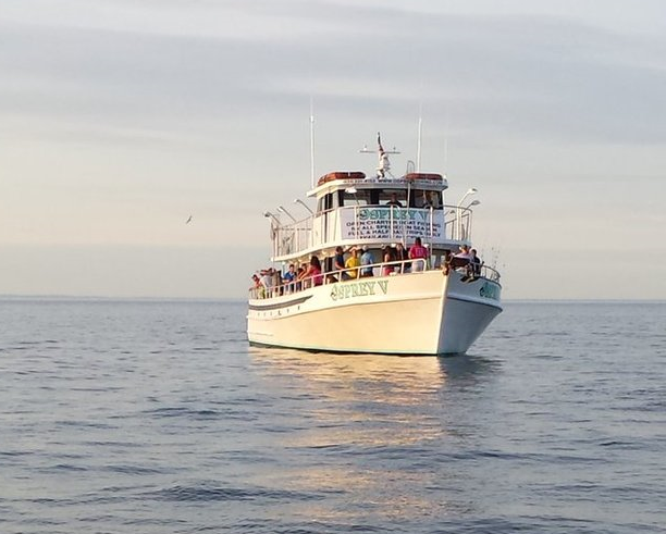 Port jefferson a visitor 39 s guide planning a day trip to for Port jeff fishing