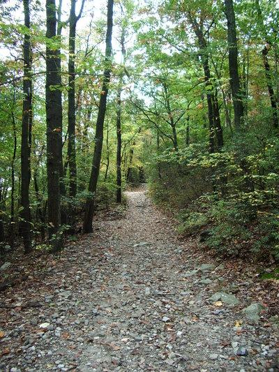 Long Island Nature Preserves