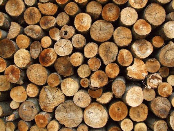 Firewood on Long Island